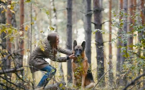 美国第一只感染新型冠状病毒的宠物狗死亡,并于6月份确诊