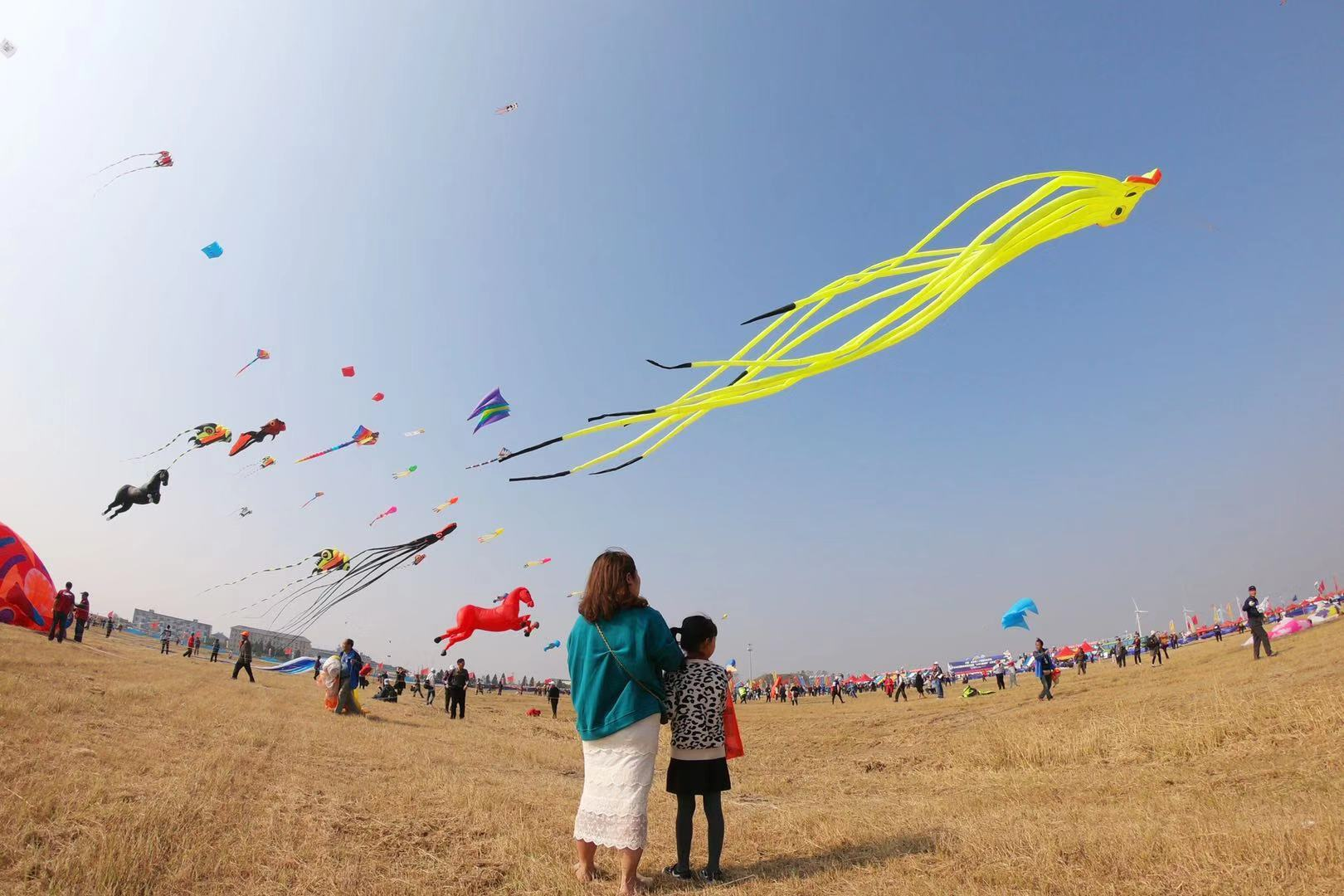 如东国际风筝会开幕 300风筝好手