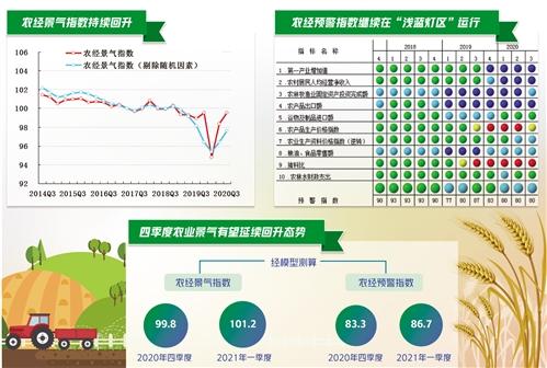 农业经济继续向好 农民收入添加安稳丨中经发布