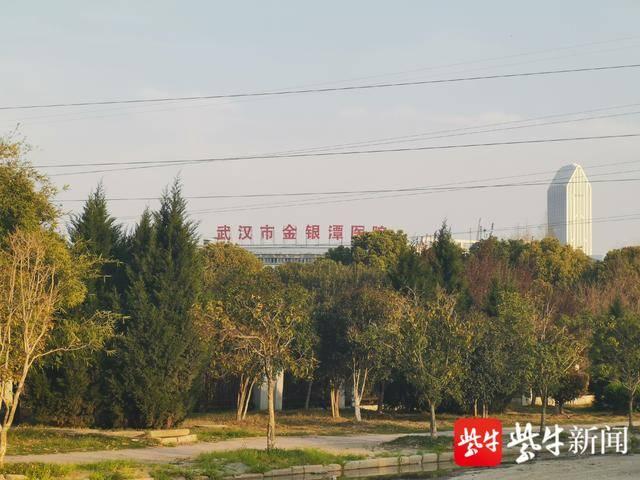 """江苏仍有近1200名医护人员在武汉战""""疫"""" 省人医、鼓楼医院今天"""